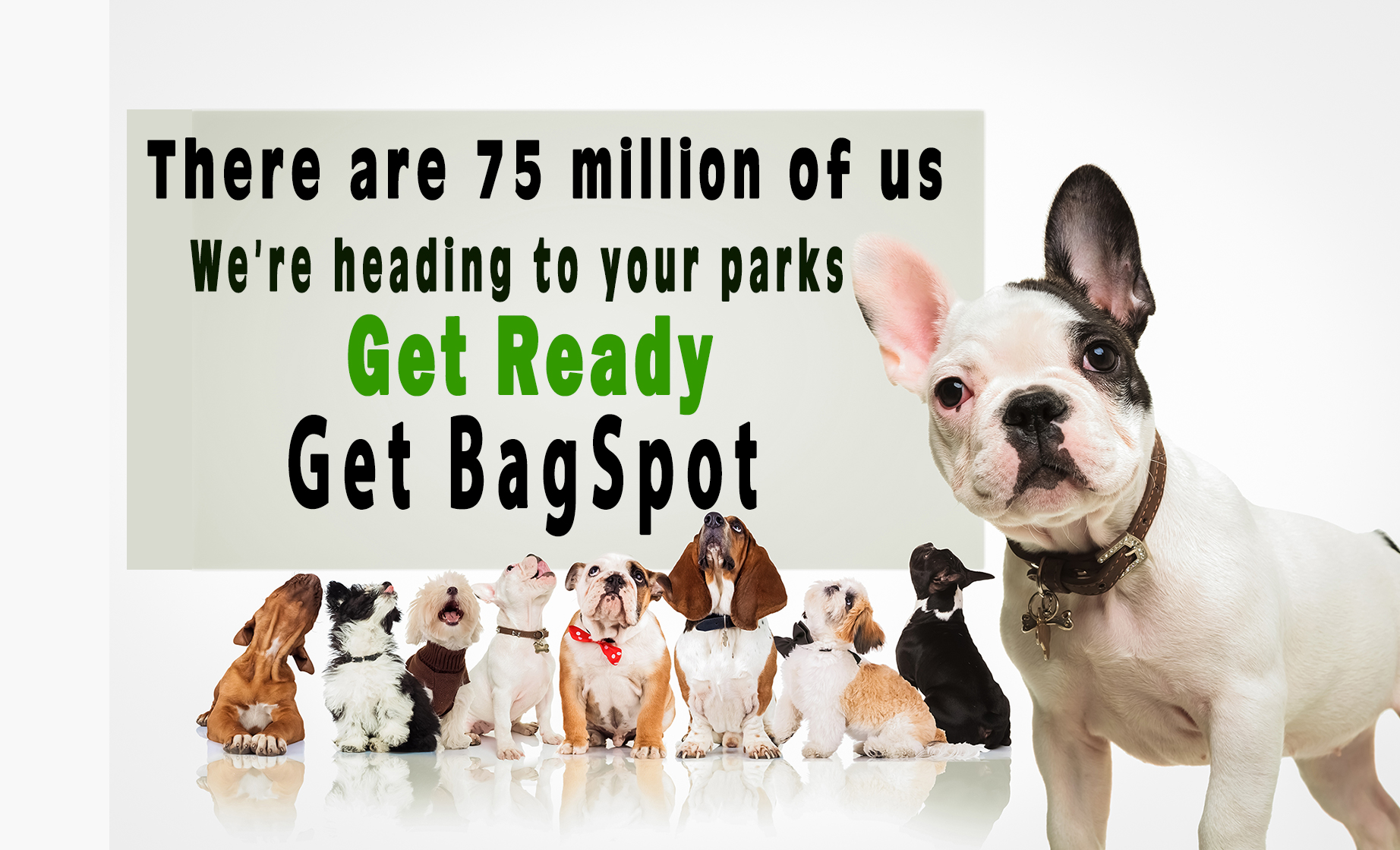 BagSpot Pet Waste Management Systems